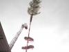 kirchweihbaum-aufstellen-iv